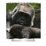 Mother And Child Gorillas1 Shower Curtain