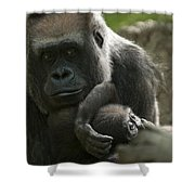 Mother And Child Gorillas4 Shower Curtain