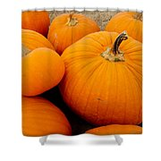 Mother And Daughter Pumpkins Shower Curtain