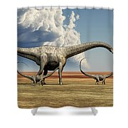 Mother Diplodocus Dinosaur Walks Shower Curtain