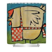 Mother Hen Shower Curtain