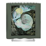Mother Moon Shower Curtain