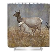 Mother Nature Shower Curtain