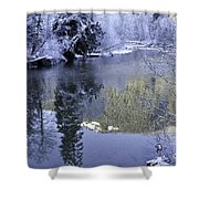 Mother Natures Chilling Touch Shower Curtain