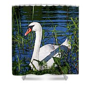 Mother Swan Shower Curtain