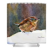 Mother Wren Shower Curtain