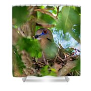 Mothering Shower Curtain