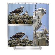 Motherly Love Raptor Style Shower Curtain