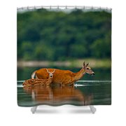 Mother's Courage Shower Curtain