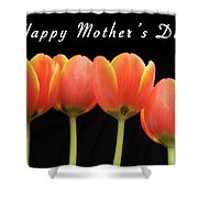 Mothers Day Card 2 Shower Curtain