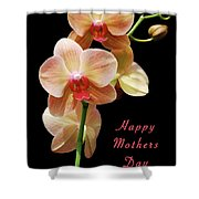 Mothers Day Card 8 Shower Curtain