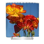 Mother's Day Flowers Shower Curtain