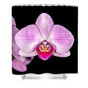 Mother's Day Present Shower Curtain