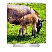 Mother's Milk Shower Curtain