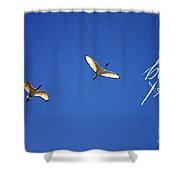 Motivational Quotes - Be Free Shower Curtain