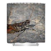 Mottled Grasshopper Shower Curtain