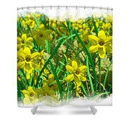 Mound Of Flowers... Shower Curtain