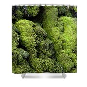Mounds Of Moss Shower Curtain