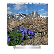 Mount Holy Cross With Wildflowers 2 Shower Curtain