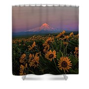 Mount Hood And Balsam Root Blooming In Spring Shower Curtain