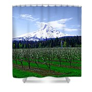 Mount Hood Behind Orchard Blossoms Shower Curtain