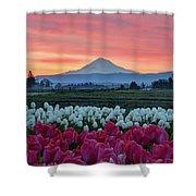 Mount Hood Sunrise Shower Curtain