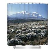 Mount Kilimanjaro, The Breach Wall Shower Curtain