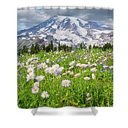 Mount Rainier And A Meadow Of Aster Shower Curtain