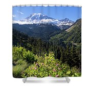 Mount Rainier From Scenic Viewpoint Shower Curtain
