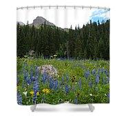 Mount Sneffels Lupine Landscape Shower Curtain