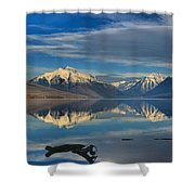 Mountain And Driftwood Reflections Shower Curtain