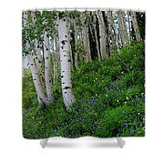 Mountain Flowers And Aspen Shower Curtain