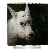Mountain Goat Kid Portrait Shower Curtain
