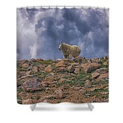 Mountain Goat Overlook Shower Curtain