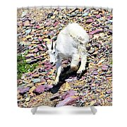 Mountain Goat3 Shower Curtain