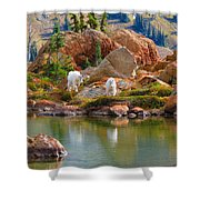 Mountain Goats In Early Fall Shower Curtain