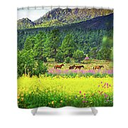 Mountain Horses Shower Curtain