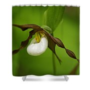 Mountain Lady's Slipper Shower Curtain
