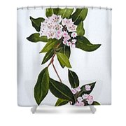 Mountain Laurel Shower Curtain