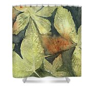 Mountain Leaves Shower Curtain