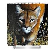 Mountain Lion In Tall Grass Shower Curtain