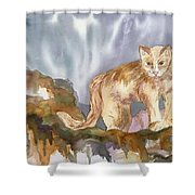 Mountain Lion On The Rocks  Shower Curtain
