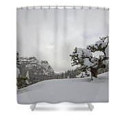 Mountain Lonely Tree Shower Curtain