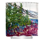 Mountain Meadow Wash Shower Curtain
