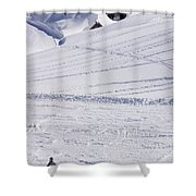 Mountain Skiing Shower Curtain