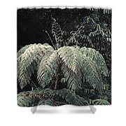 Mountain Tree Shower Curtain