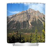 Mountain View 1 Shower Curtain