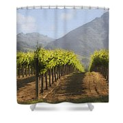 Mountain Vineyard Shower Curtain