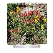 Mountain Wild Flowers Shower Curtain