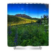 Mountain Wildflowers And Light Whispers Shower Curtain